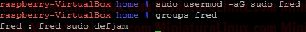 Linux-Example-Add-User-To-Sudo-Group-2