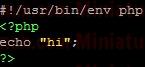 PHP-Self-Executing